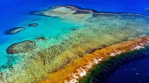 Natural-Park-of-the-Coral-Sea,-new-caledonia