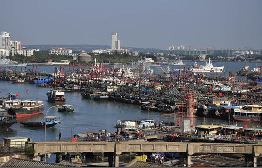 Exhibit 4: View of Danzhou Harbor from Baimajing, With Fishing Fleet, Maritime Law Enforcement, and Navy Ships.