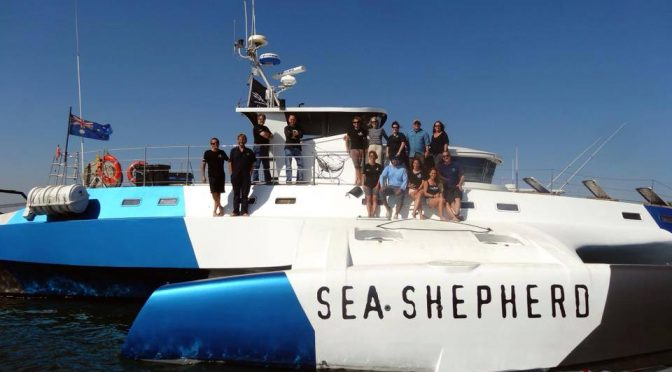 Sea Shepherd in Latin America