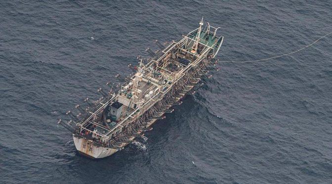 The Ecuadorian Navy's Constant Struggle Against IUU Fishing